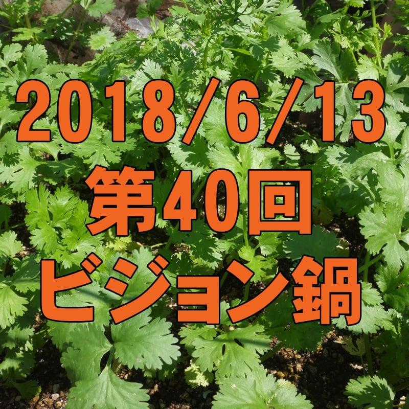6/13 第40回ビジョン鍋: 新鮮自家製パクチー鍋で世界を鍋にする!のイメージその1