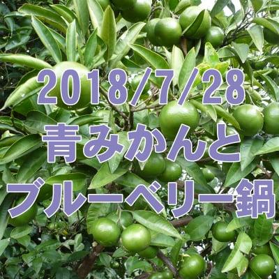 7/28 青みかんとブルーベリー鍋: 秘境里山で夏の旬で爽やか鍋!