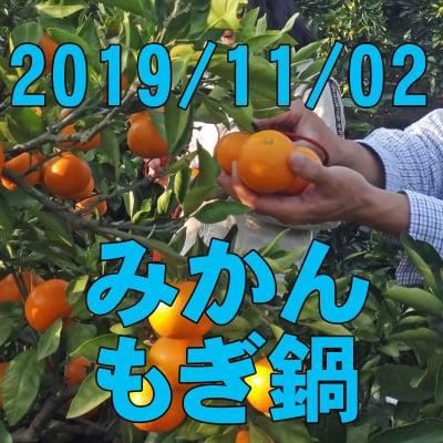 11/2 みかんもぎ鍋: 収穫作業のお手伝いと採れたてみかんでみかん鍋!