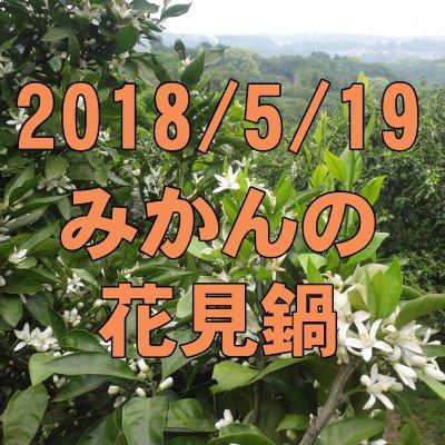 5/19 みかんの花見鍋: 近場の秘境で天然アロマルーム体験!