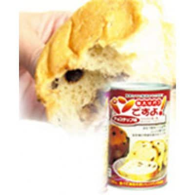 名古屋ライトハウス     パンですよ【チョコチップ味】 100g  100 g  480 円