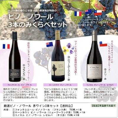 厳選ピノ・ノワール 赤ワイン3本セット