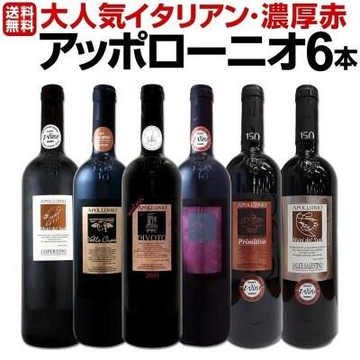 濃厚赤ワインセット 6本 wine set 大人気イタリアンアッポローニオ Italy