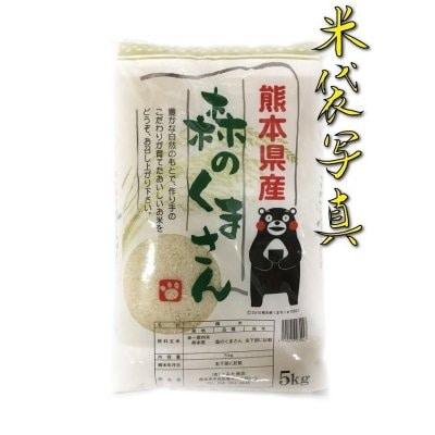 米 10kg 九州 熊本県産 森のくまさん 新米 あすつく 令和2年産 精白米 5...