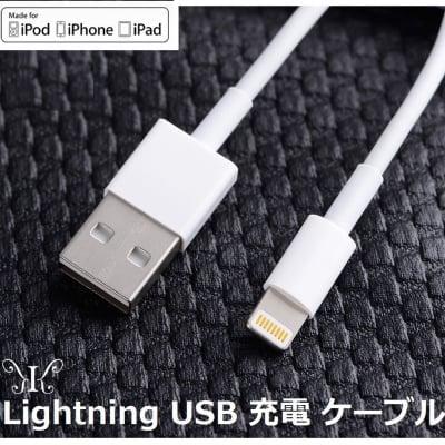 【メール便定形外・送料無料】ライトニングケーブル  1m  USB iPhone X アイフォン アイフォーン iPad iPod Lightning Apple 充電 転送 【期間限定商品】