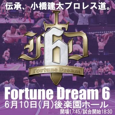 [大会公式パンフレット]FortuneDream6の画像4
