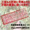 京野菜ルッコラ1kg[4月のみ限定応援販売]|販売終了