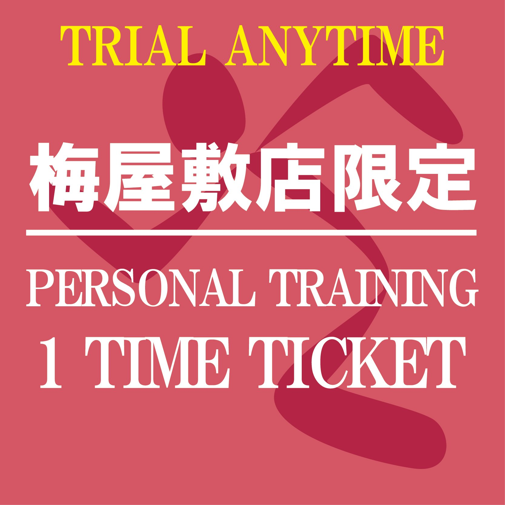 パーソナルトレーニング60分1回チケット〜ANYTIME TRIAL〜[エニタイムフィットネス梅屋敷店限定]のイメージその1