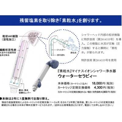 ウォーターセラピー(素粒水)シャワーヘッド