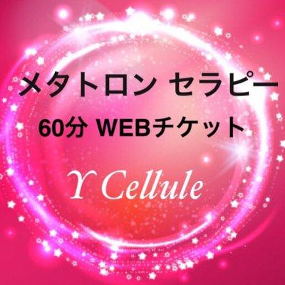 定期便専用 メタトロンセラピー60分|WEBチケット