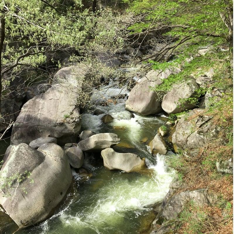 新緑輝く昇仙峡ハイキングのイメージその5