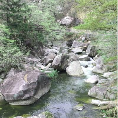 新緑輝く昇仙峡ハイキング