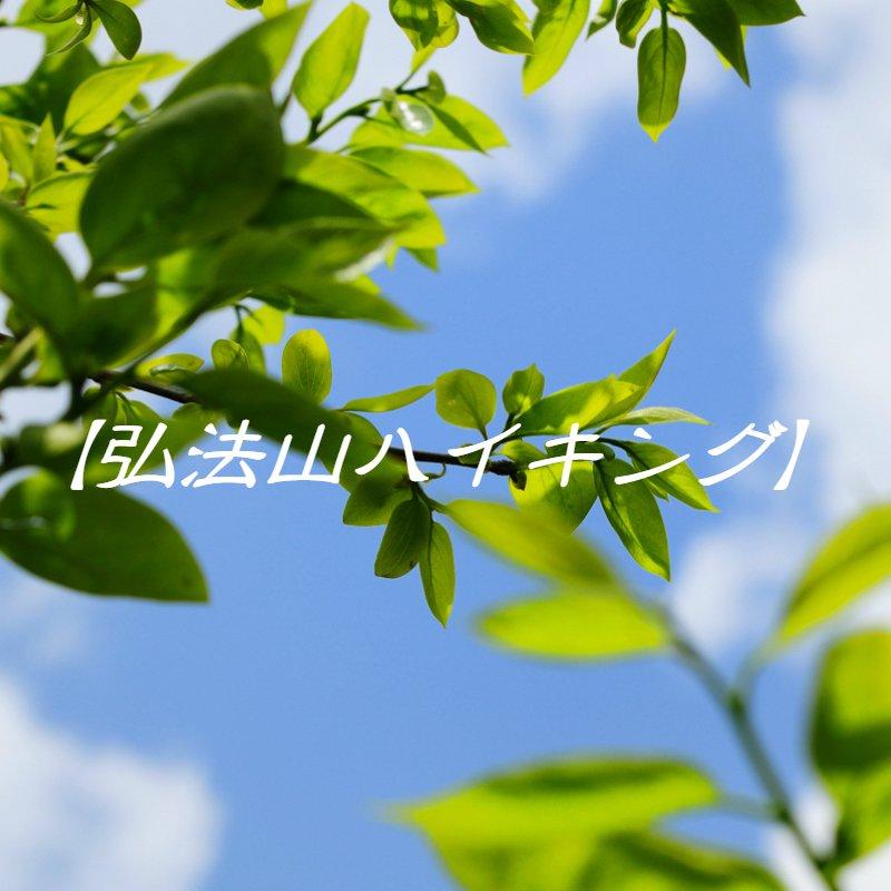弘法山ハイキング〜丹沢の四季を満喫〜のイメージその1