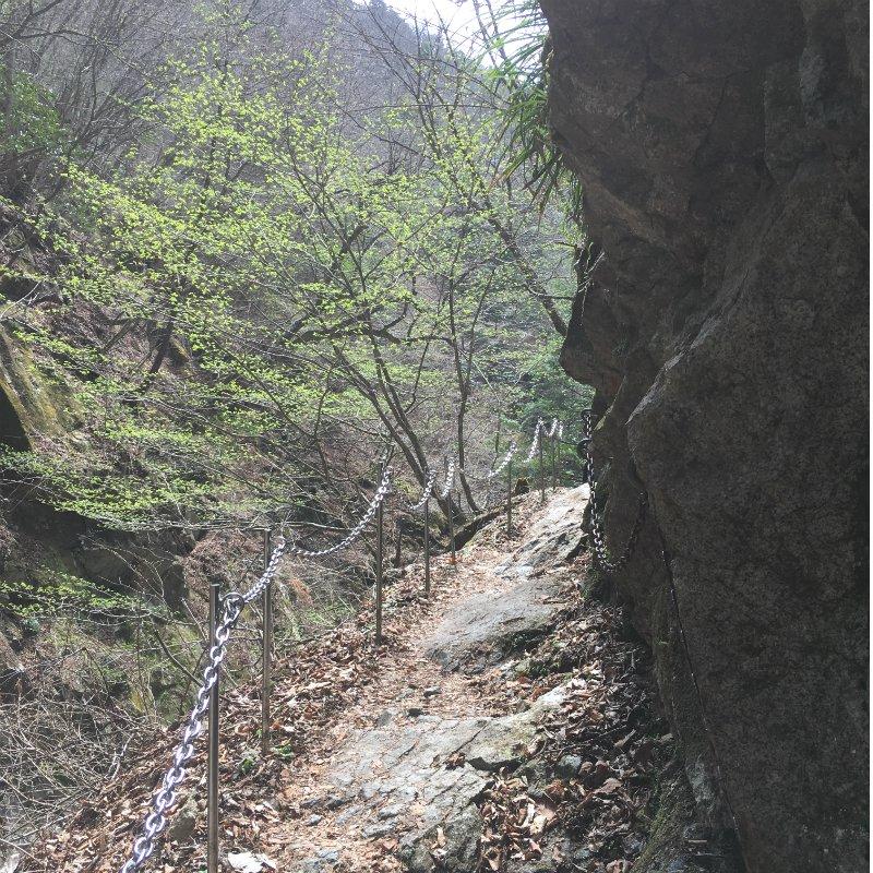 西沢渓谷ハイキング〜セラピーロードで森林浴〜のイメージその5
