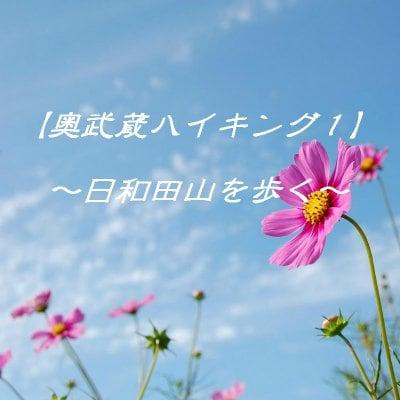 奥武蔵の自然と遊ぶ ~日和田山ハイキング~