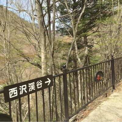 西沢渓谷ハイキング〜セラピーロードで森林浴〜のイメージその3