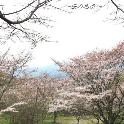 弘法山ハイキング〜丹沢の四季を満喫〜のイメージその5