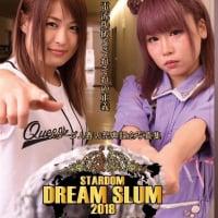スターダム・DREAM SLUM2018・写真集