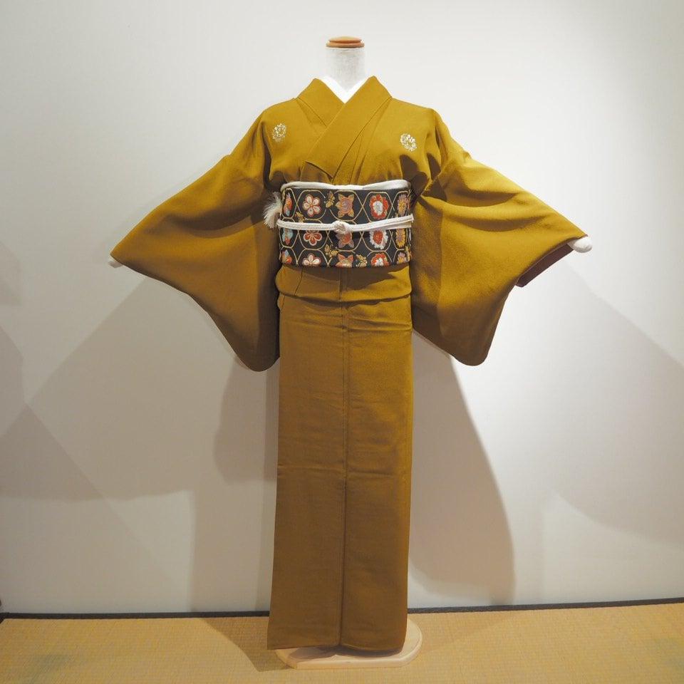 レンタル着物一式 色無地(正絹)袷 RI-05のイメージその1