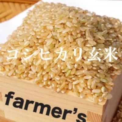 《30年度産》コシヒカリ玄米5kg☆無農薬有機栽培長野県上田市真田の里よりお届け
