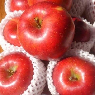 長野県須坂市有機栽培りんご『シナノスイート』5kg
