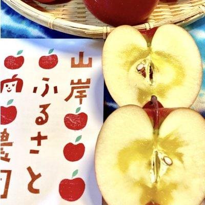 蜜がたっぷり!長野県須坂市『山岸りんご農園』のりんご5kg(ふじ)