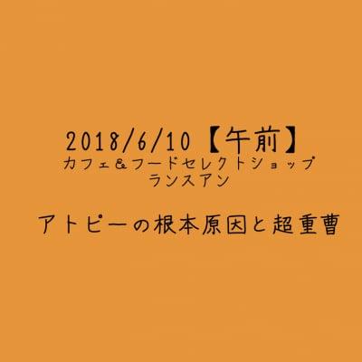 【2018/6/10午前】アトピーの根本原因と超重曹