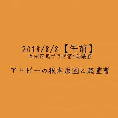 【2018/8/8午前】アトピーの根本原因と超重曹