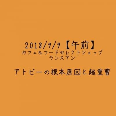 【2018/9/9午前】アトピーの根本原因と超重曹