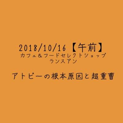 【2018/10/16午前】アトピーの根本原因と超重曹