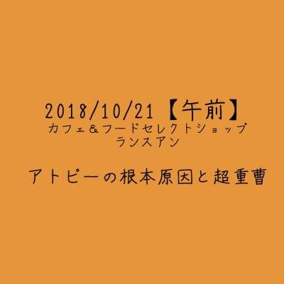 【2018/10/21午前】アトピーの根本原因と超重曹