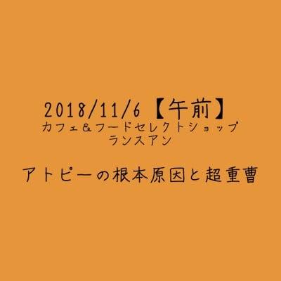 【2018/11/6午前】アトピーの根本原因と超重曹
