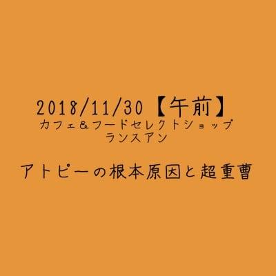 【2018/11/30午前】アトピーの根本原因と超重曹