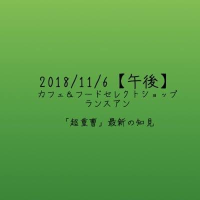 【2018/11/6午後】「超重曹」最新の知見