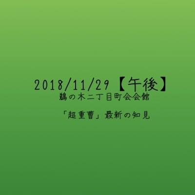 【2018/11/29午後】「超重曹」最新の知見