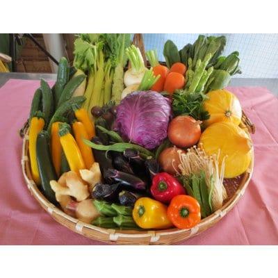 北海道野菜と北海道産食材を使用したお楽しみ食品BOX レギュラー
