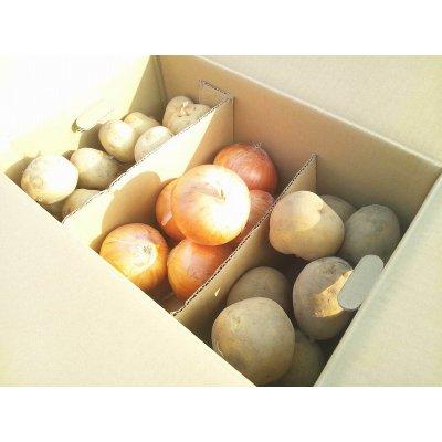 北海道じゃがいも2種と玉ねぎセット!男爵いも3kg /きたあかり(いも)3kg /玉ねぎ3kg