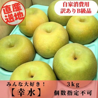 [予約商品]幸水梨/3㎏[訳あり品/B級品]
