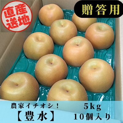 【農家イチオシ!】豊水/5㎏/5Lサイズ/10個入り
