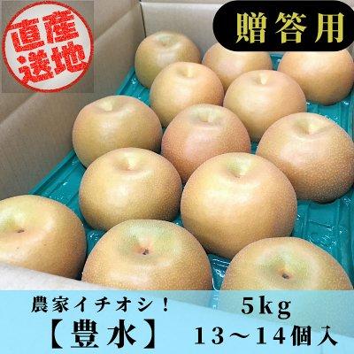 [ご予約受付:9月上旬から発送予定]豊水梨/5㎏/3Lサイズ/13~14個入り