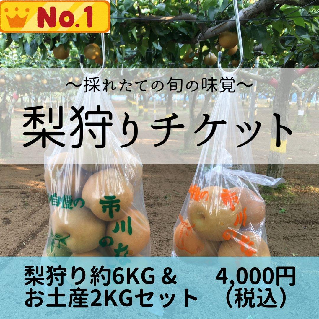 梨狩りチケット[8/29予約用]梨狩り袋(約6㎏)&お土産梨袋(2㎏)セットのイメージその2