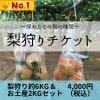 梨狩りチケット[当日券]梨狩り袋(約6㎏)&お土産梨袋(2㎏)セット
