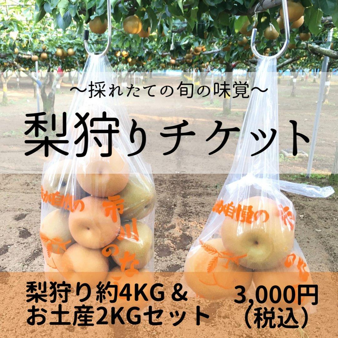 梨狩りチケット[8/22予約用]梨狩り袋(約4㎏)&お土産梨袋(2㎏)セットのイメージその2