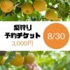 梨狩りチケット[8/30予約用]梨狩り袋(約4㎏)&お土産梨袋(2㎏)セット