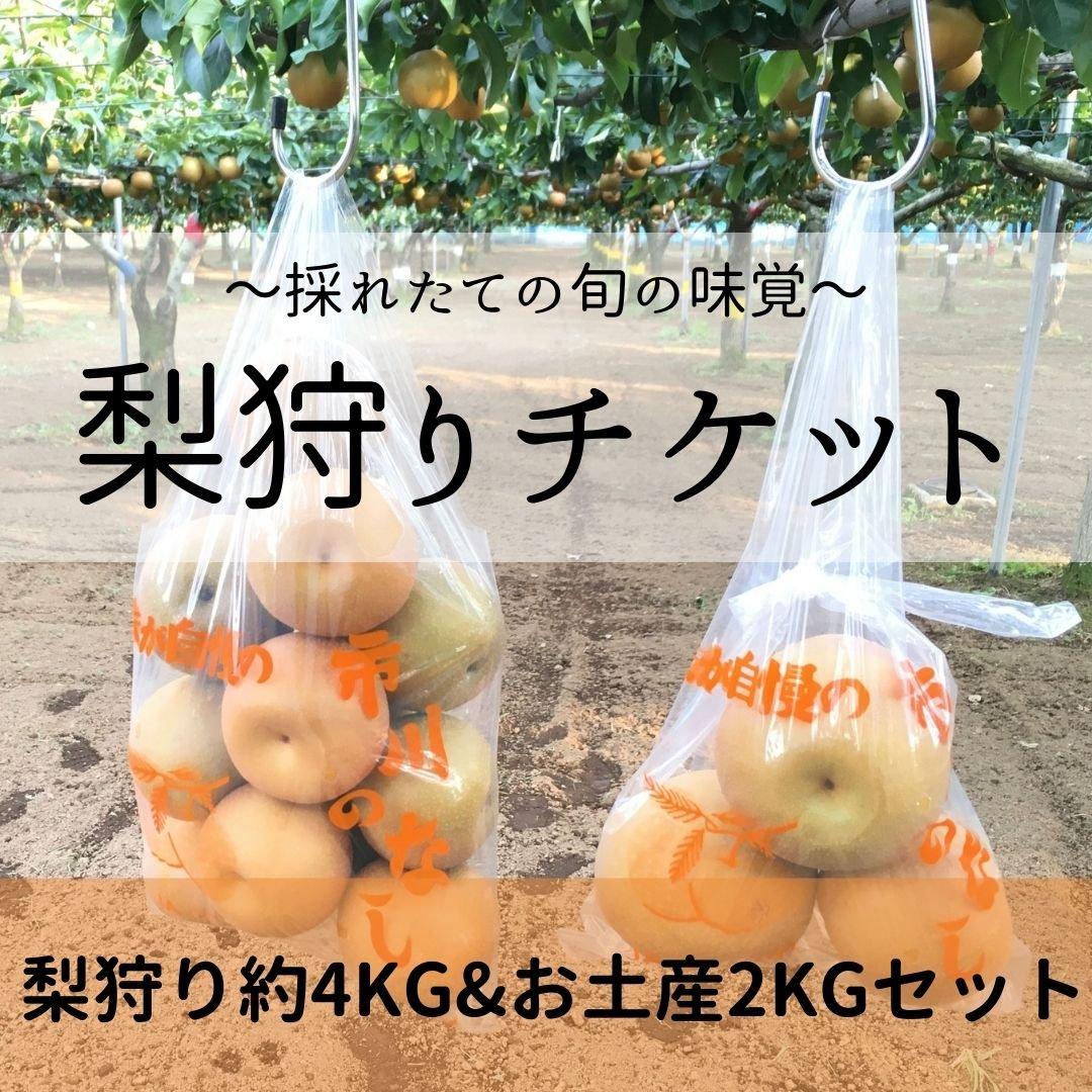[8/29チケット]梨狩り袋(約4㎏)&お土産梨袋(2㎏)のイメージその2