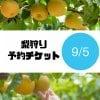 [9/5チケット]梨狩り袋(約6㎏)&お土産梨袋(2㎏)セット