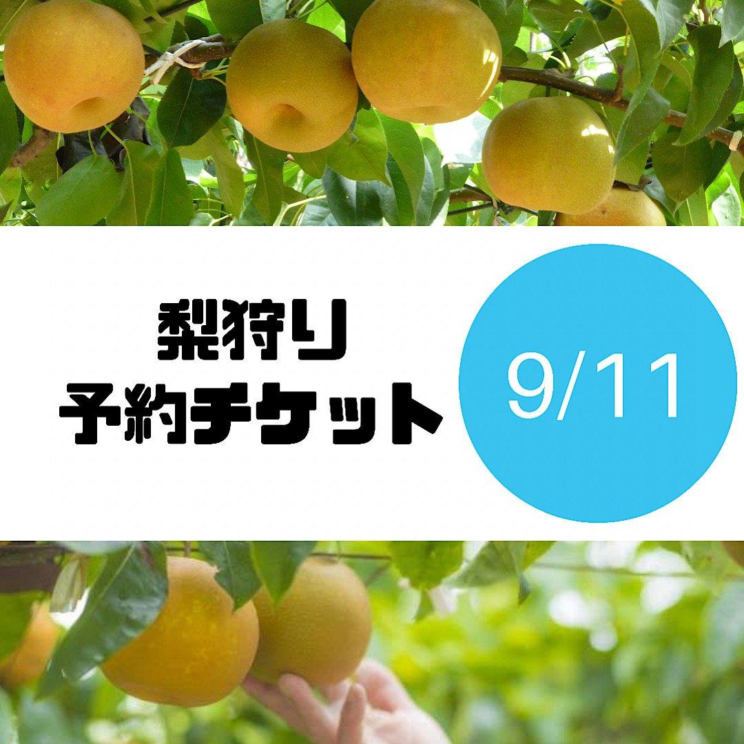 [9/11チケット]梨狩り袋(約6㎏)&お土産梨袋(2㎏)セットのイメージその1