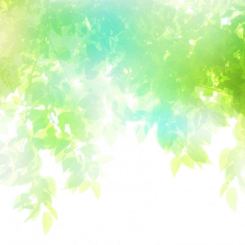 【オンライン動画】三好えみのボイジャーレベル1復習用動画(受講者専用)のイメージその1