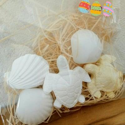 アロマストーン・亀と貝殻セット(5個入)