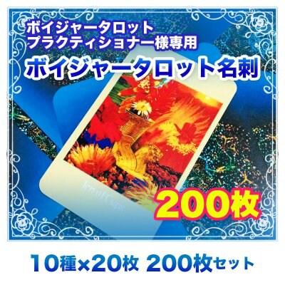 【名刺】ボイジャー名刺 200枚セット(10種類×20枚) ※送料無料
